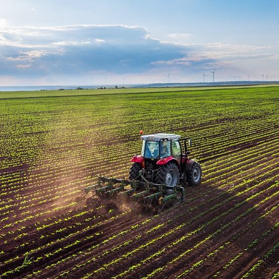 Le bio-ethanol, un combustible d'avenir.